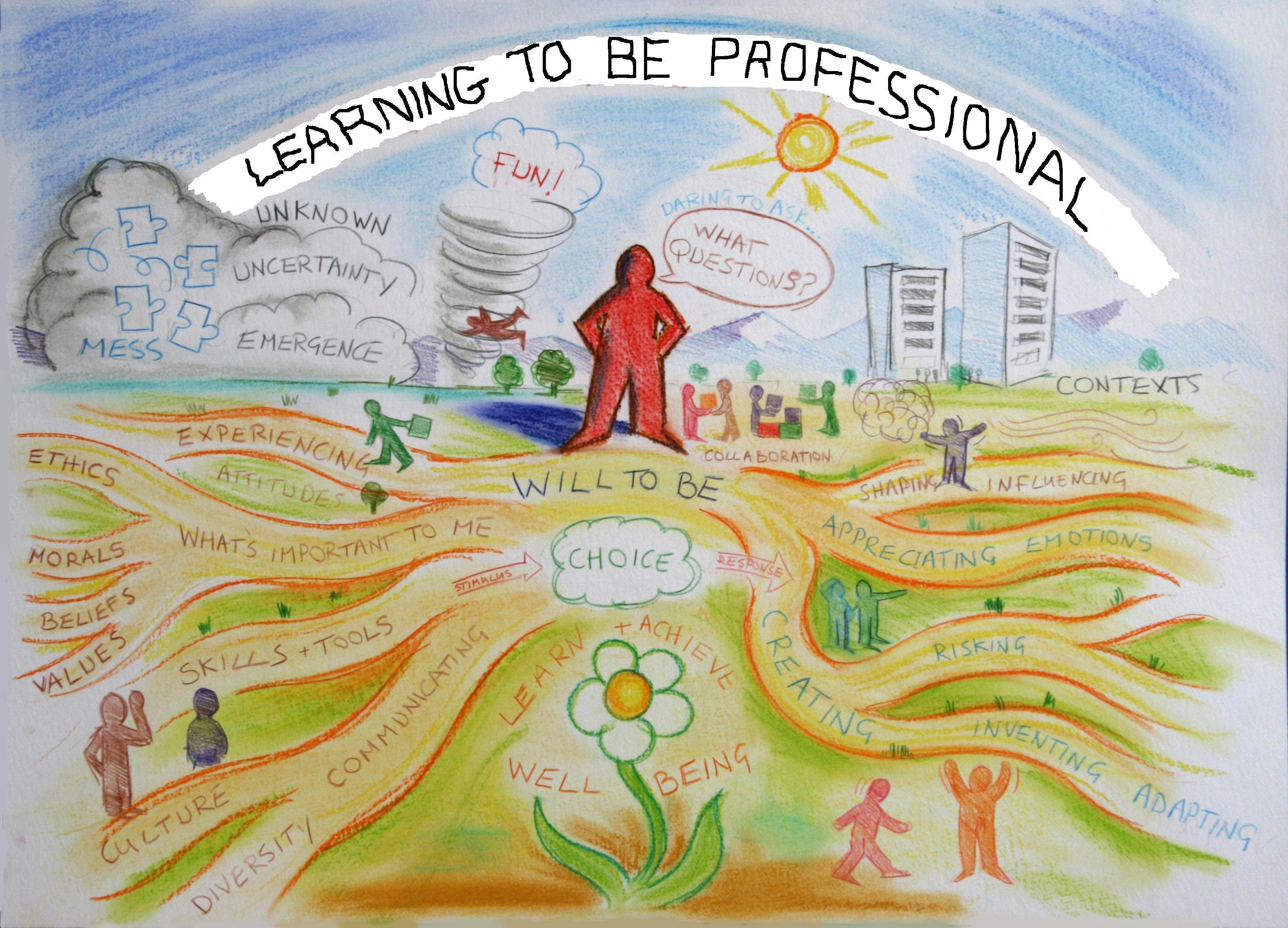 learning to be professional through a life wide curriculum conference